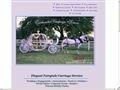 Enchanted Carriage Service